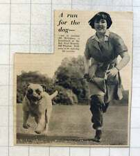 1953 Kennel Maid Jill Mcguinness At Bell Mead Kennels Old Windsor