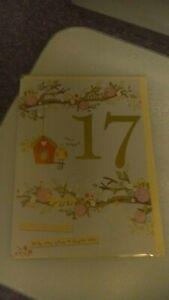Age 17 birthday cards