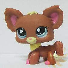 Littlest Pet Shop LPS Animal Loose Toy #1623 Chien Papillon Brown Chihuahua Dog