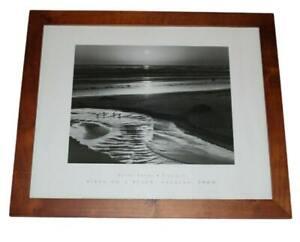'66 Birds on a Beach 22.5x18.5  Large Brown Wood Framed Art Print by Ansel Adams