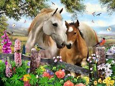 3D Linsenförmige Bild Meadow Szene Pferde vögel schmetterlinge, blumen
