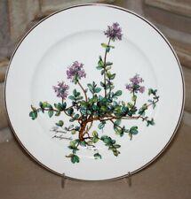 Villeroy/&Boch Tiefer Teller BOTANICA Valeriana officinalis mit Wurzel Ø 22 cm