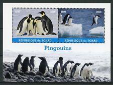 Chad 2018 MNH Penguins Emperor Penguin 2v M/S Pingouins Birds Stamps
