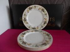 Multi Dinner Plate Contemporary Original Porcelain & China
