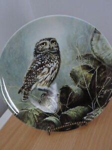 THE LITTLE OWL  PLATE - BOND'S OWLS - DANBURY MINT - WEDGWOOD