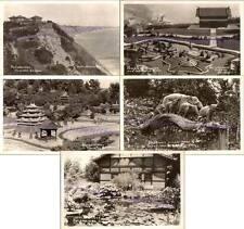 1937 Santa Monica California Bernheimer Oriental Gardens Real Photo Postcards -5