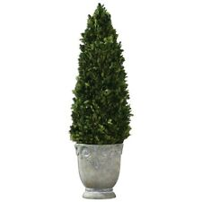 Uttermost Boxwood Cone Topiary - 60111