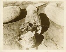 IRWIN ALLEN RAY HARRYHAUSEN THE ANIMAL WORLD 1956 VINTAGE PHOTO ORIGINAL #8