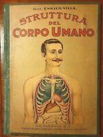 STRUTTURA DEL CORPO UMANO  G.B.PARAVIA & C. ca 1900 DOTT. ENRICO VILLA