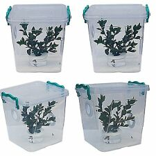 Stick Insect,Leaf Insect Arboreal Vivarium.Cage,Tank,+ Mini Twig Pot + Atomizer