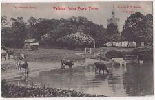 Felsted from Bury Farm, Essex Postcard, B676
