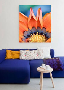 Poppy Flower Fine Art Painting Floral Limited Edition Signed Print