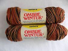 Earthtone Natura Ombre Wintuk Variegated Yarn 2 3 oz Skeins 100% Dupont Orlon