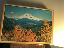 Warren paper Products Co 500 piece Jigsaw Puzzle- complete!