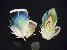Victorian scrap # 7261 - FEATHERS - PAIR - PAPER