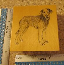 CHESAPEAKE BAY RETRIEVER  MW RUBBER STAMP- STAMP GALLERY