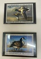 Migratory Bird Hunting and Conservation Stamp Magnets Canada Goose & Mallards