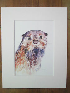 """Watercolour otter, print of original painting, in 10"""" x 8"""" Mount"""