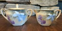 RS PRUSSIA PORCELAIN LUSTER DOGWOOD CREAMER AND SUGAR BOWL MARKED ANTIQUE