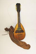 Vecchio Mandolino Strumento Musicale Con Borsa Dachbodenfund