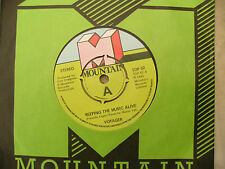VOYAGER KEEPING THE MUSIC ALIVE / THE GRASS mountain 52 demo / promo .....45 RPM