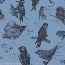 RARE! - Liberty Tana lawn cotton fabric *Ornithology* ~ 43cm x 33cm