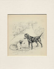 LABRADOR RETRIEVER AND BORZOI OLD DOG PRINT by K F BARKER READY MOUNTED