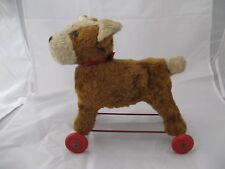2307*  peluche chien sur roulette à tirer ancien