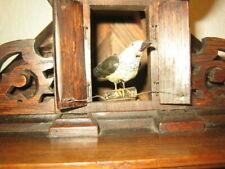 Extremely Rare Musical BEHA Shelf Cuckoo Clock 6 Tune Music Box