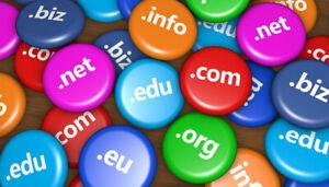 RegisterDomains.info - Short Domain Name - Catchy Name .INFO