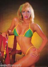 LOT OF 2 POSTERS: NANCY MEYER - SEXY FEMALE MODEL  - FREE SHIP  #14-756  LC12 E