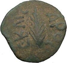 Porcius Festus  Jerusalem Nero Ancient  Greek / Roman Coin Palm branch   i36719
