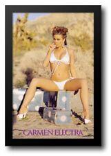 Carmen Electra Luggage 3712 Funky Enterprises Poster 2004 Stephen Wayda Sealed