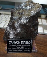 490 gm . CANYON DIABLO IRON METEORITE ; TOP GRADE WITH LABEL; STAND,