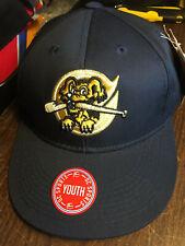 Charleston Riverdogs MiLB Team Replica Baseball Hat Cap New York Yankees Youth