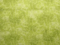 "Distinction The Gallery by Choice Fabrics; Light Green 100% Cotton 44"" wide SBY"