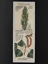 No.19 LOMBARDY POPLAR - Trees of the Countryside T25 by Typhoo Tea Ltd. 1938