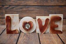 "Fila Brasileiro - wooden inscription ""Love"" with a dog, Art Dog Usa"