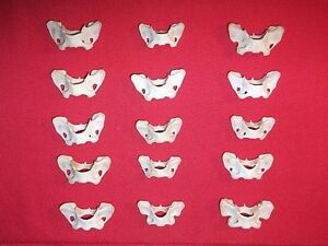 16 Butterfly shaped Mink bones Atlas vertebrae real animal bone Jewelry art