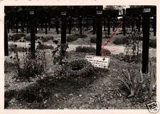 12826/ Originalfoto 7x10cm, Soldatenfriedhof Frankr. WK I mit Propagandaschild