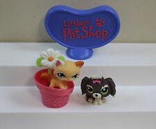 Littlest Pet Shop # 626 Glitter Short Haired Cat & # 1523 Lhaso Apso     Lot EE