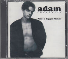 Adam Couldwell : Paint a Bigger Picture NEW & SEALED CD FASTPOST
