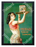 Historic Murad Turkish Cigarettes 1900s Advertising Postcard