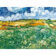 Vincent Van Gogh Olive Plain Near Auvers HD ART Canvas Print Oil Painting  decor