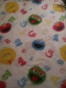 Northwest Sesame Street Full Size Flat Sheet (T12)