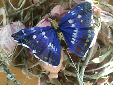 Authentic Blue Feather Butterfly - 8.0cm wingspan