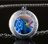 Hummingbird Photo Glass Tibet Silver Chain Locket Pendant Necklace#U51