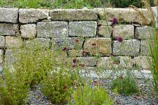 270,-€/t Muschelkalk Garten Mauerstein Trockenmauer