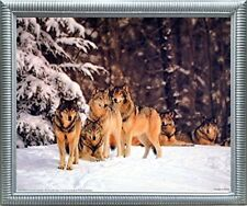 Timber Wolves in Snow Wild Animal Wall Decor Silver Framed Art Print Picture ...