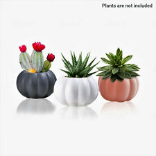 3pc/Ceramic pumpkin Succulent Planters ,mini cactus plant pot small flower pots
